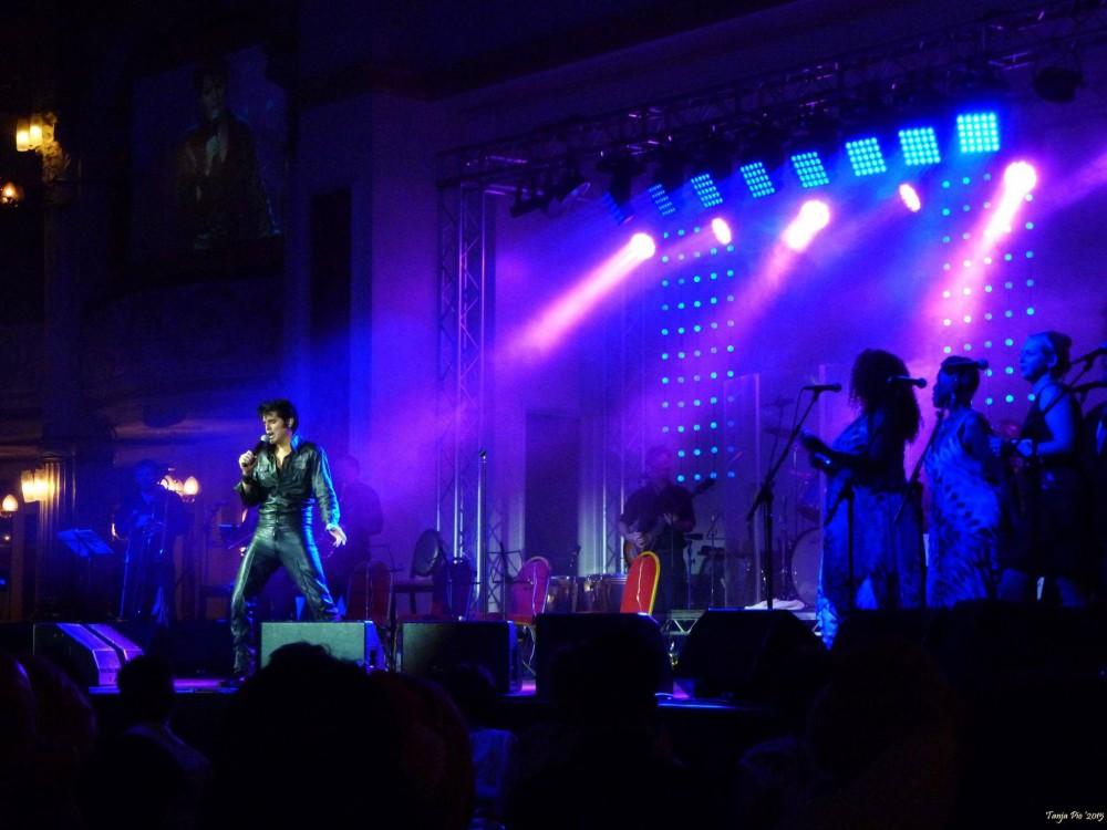 Elvis_1